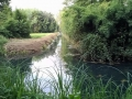 Canali in Versilia