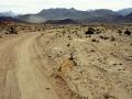 La microvegetazione del deserto,distrutta dal passaggio di veicoli,difficilmente può ricostituirsi