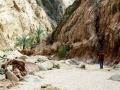 Wadi nel Sinai
