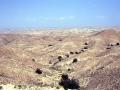 Wadi tunisino