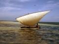 Tipica imbarcazione
