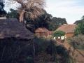 Villaggio vicino Malindi