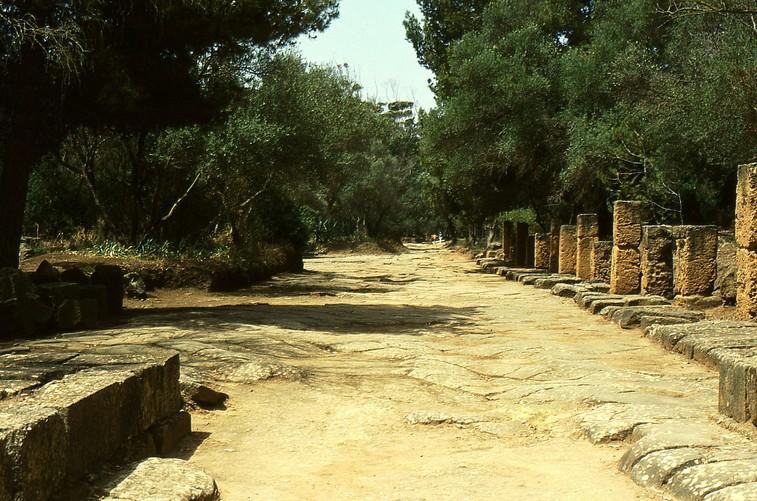 Il cardo romano