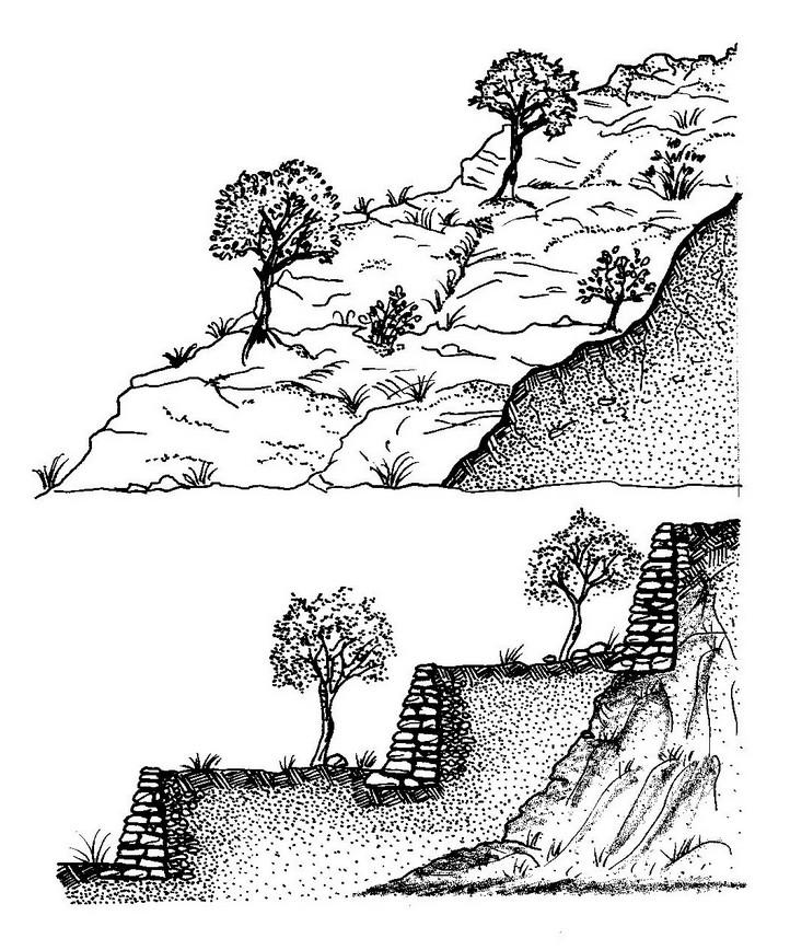 Schema della costruzione di un terrazzamento