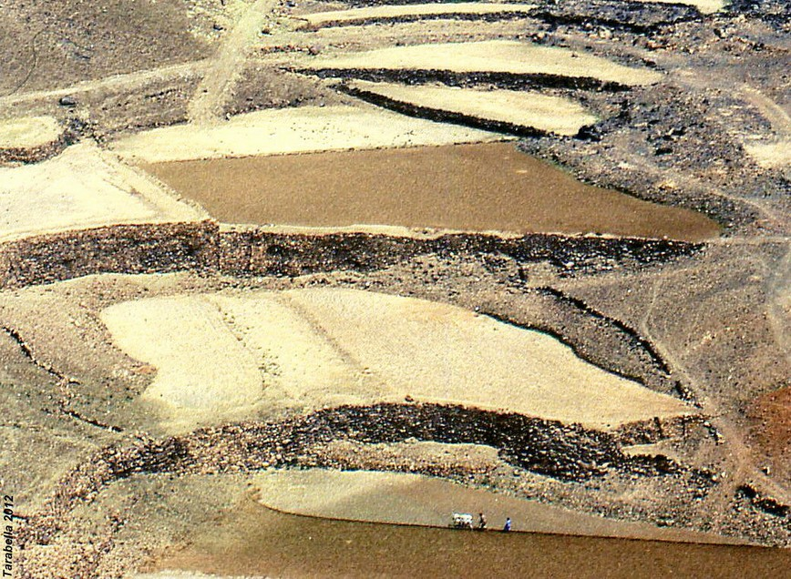 Particolare delle terrazze con il sistema delle dighe harrah