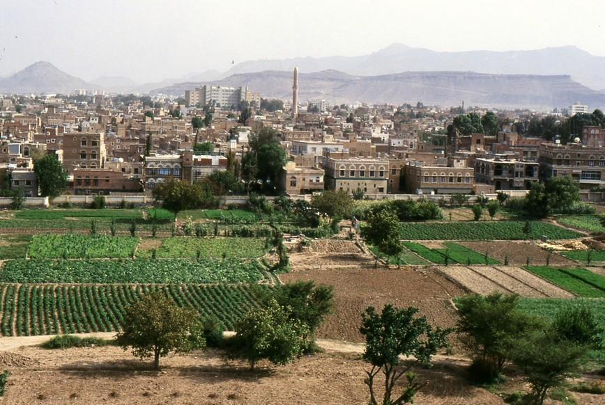 Orti e coltivazioni intorno alla città di Sana'a