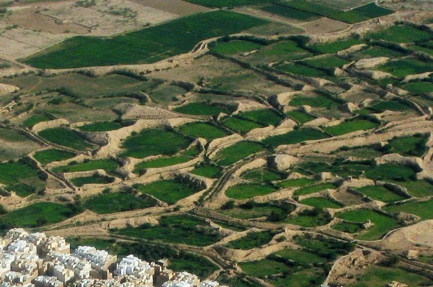 Giardini nelle depressioni di sabbia di Shibam