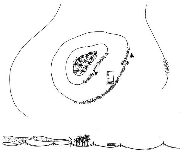 Schema di dune artificiali