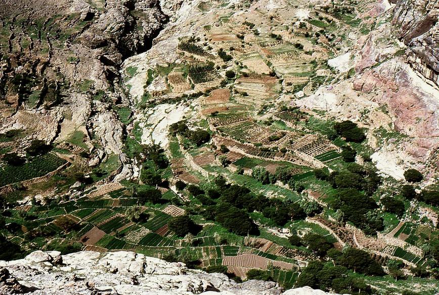 Wadi con coltivazioni a terrazze