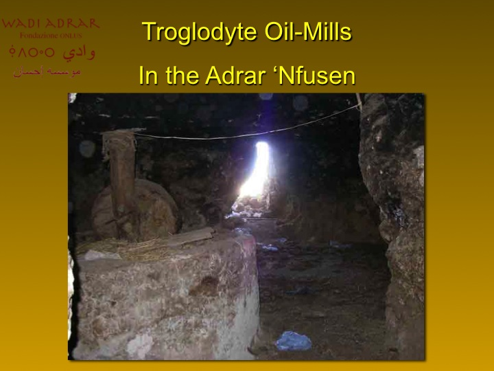 Macina per le olive (foto gentilmente concesse da Wadi Adrar Fondazione O.N.L.U.S.)
