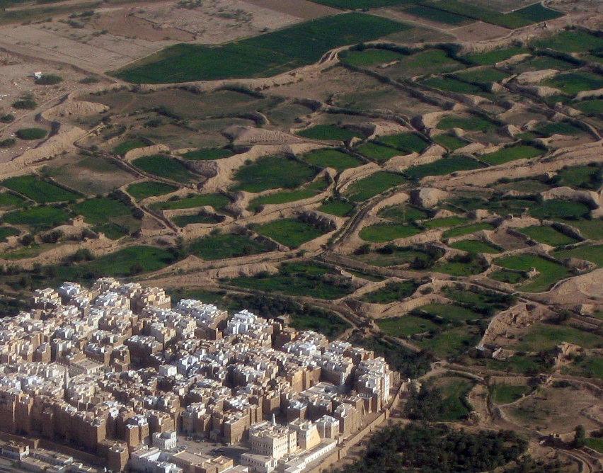 Shibam-Hadramaut L'agglomerato compatto della città circondato dalle depressioni d'argilla dei giardini coltivati