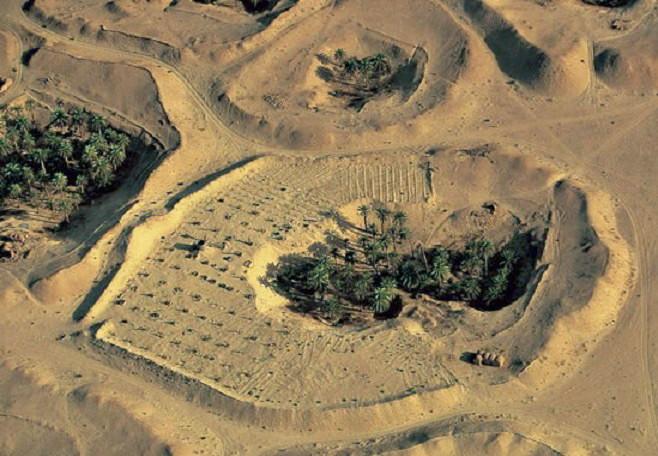 Coltivazioni in crateri di sabbia nel Sahara