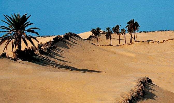 Dune artificiali nel Sahara
