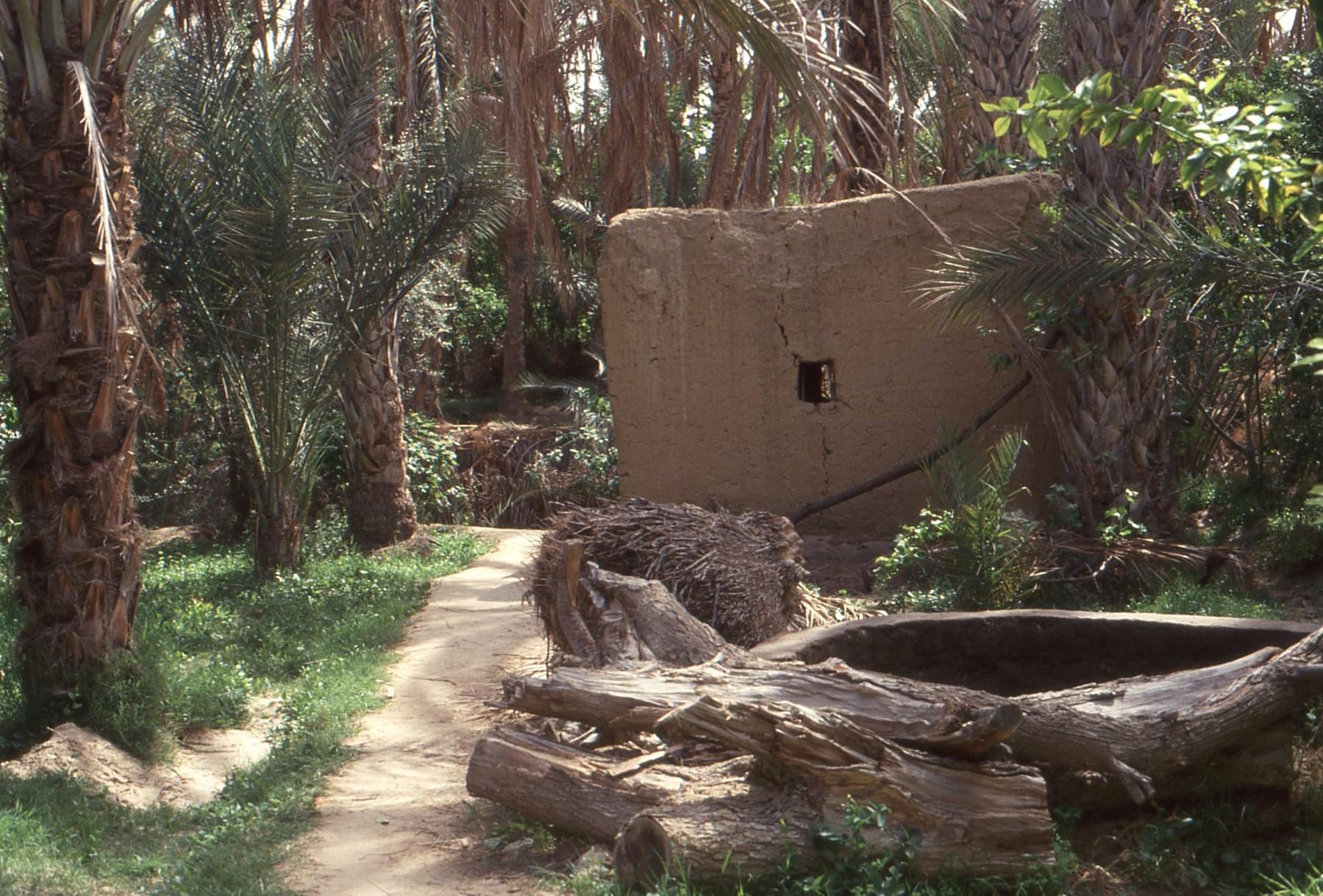 Nell'oasi, la trama del territorio, l'orientamento delle abitazioni e dei villaggi, l'organizzazione dei giardini sono parte di una sfera di segni in cui tutte le cose hanno un senso