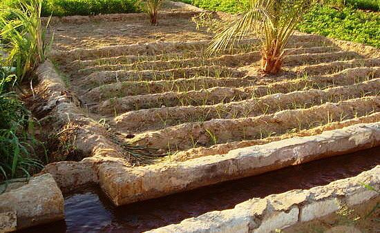 L'acqua raccolta nei bacini di stoccaggio viene utilizzata per l'irrigazione delle singole particelle di terreno