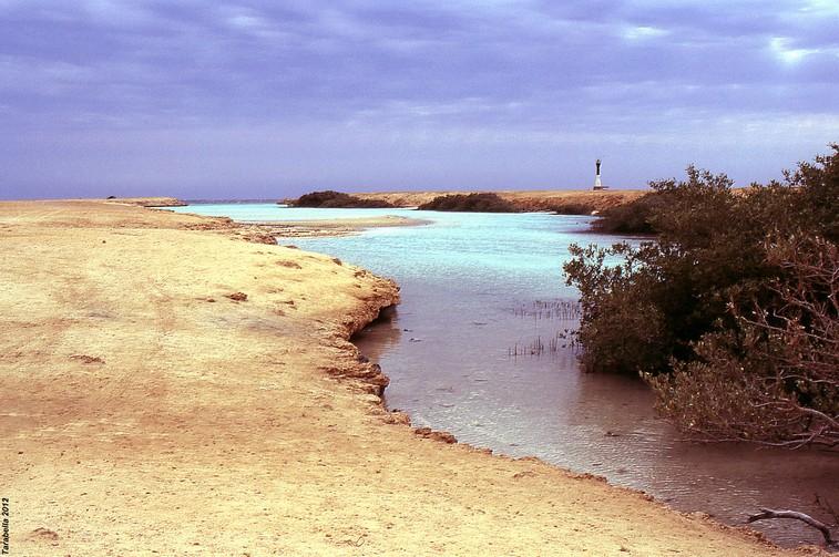 Oasi marina (Mar Rosso)