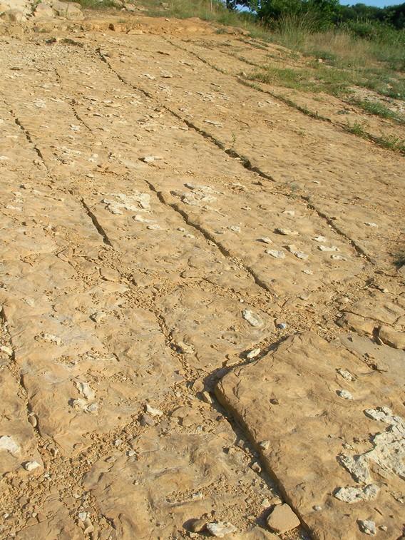 Particolare della pavimentazione del tumulo