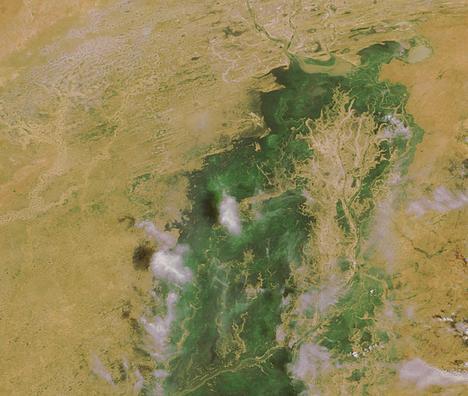 Mali - Il delta del fiume Niger nel Sahara, mostra il ciclico alternarsi di alluvioni a fasi aride