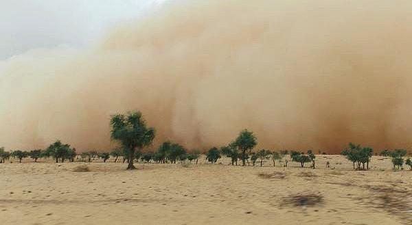L'effetto della desertificazione nel Sahel. La mancanza d'acqua inibisce la vegetazione e la coesione dei terreni.Il suolo asciutto, non più protetto si disintegra e va ad alimentare le tempeste di sabbia.