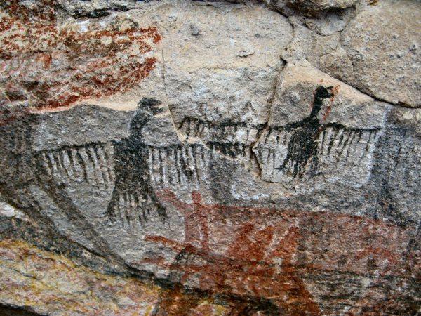Cueva Pintada (Baja California) Pittura di condor. Questi dipinti ricorrono nell'arte muraria Meso-Americana e sono il risultato dell'esperienze sciamaniche e di benefici concreti. Il volo degli uccelli è un segnale importante che indica le prede e le pozze d'acqua durante le migrazioni