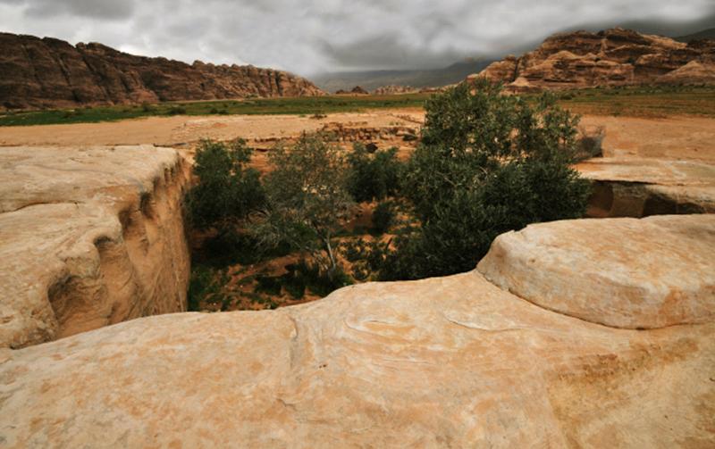 Giardino di pietra a Petra