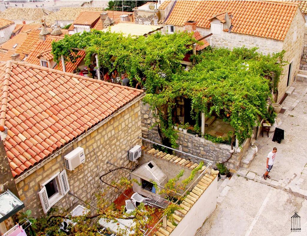 Particolare di giardino pensile di un'abitazione a Dubrovik (Croazia)