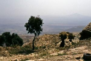Donne che trasportano il fieno sulla rupe di Thula