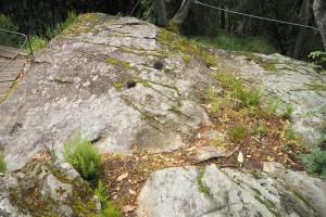 Trogna - Rock with petroglyph
