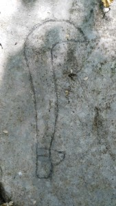 Greppolungo - ''pennato''