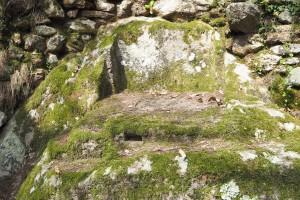 Curiceta - Holy altar particular