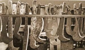PENNATI - Curved blades
