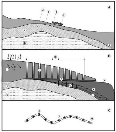 Fig.5 Tunnel di captazione ai piedi della collina