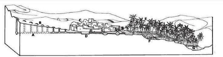 Fig.8 Tunnel di captazione e l'ecosistema dell'oasi