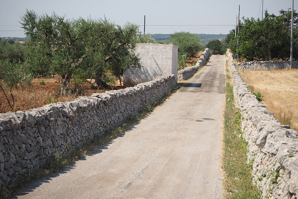 Martinafranca (Apulia) The typical dry walls delimit the streets of the Apulian countryside by designing and characterizing the landscape